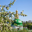 Kiev Pechersk Lavra monastery and tree in blossom — Stock Photo