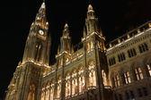 Vienna City Hall at Christmas — Stock Photo