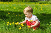 Little Girl In Dandelions — Stock Photo