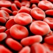 Red blood cells,white blood cells,cancer cells in high details — Stock Photo