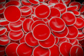 Blood cells , SEM of red & white blood cells — Stock Photo
