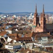 Basel Munster — Stock Photo #14682853