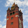 Basel Town Hall Tower — Stock Photo