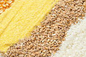 Colorful cereal seeds background — Stock Photo