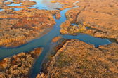 Aerial view of wetland — Stock Photo