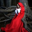 Beautiful woman with red cloak posing in the woods — Stock Photo