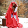 Beautiful woman with red cloak and suitcase — Stock Photo #42276617