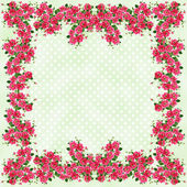 Rose Framed Pastel Polkadots — Stock Photo