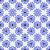 Fondo floral azul transparente — Foto de Stock