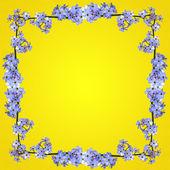 黄色蓝色花卉帧 — 图库照片