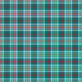 Turquoise, Red, & White Plaid — Foto Stock