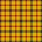 Plaid chaud brillant — Photo