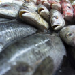 Stock Photo: Assortment of fishes