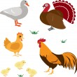 Farm animals set 4 - Stock Vector