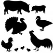 Farm animals vector silhouettes — Stock Vector #22940828