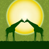 Vector card with two giraffes — Stock Vector