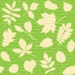 Seamless pattern with leaves and text — Stock Vector