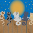Wektor stockowy : Cats sit on fence. Vector illustration.