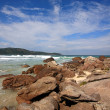Lopes mendes beach — Stock Photo