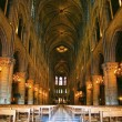 Notre Dame de Paris carhedral — Stock Photo #12683458