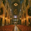 Notre Dame de Paris carhedral — Stock Photo #12683460