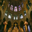 Notre Dame de Paris carhedral — Stock Photo #12683462