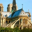 Stock Photo: Notre Dame de Paris carhedral