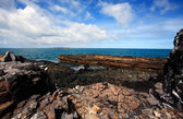 Abrolhos islands — Stock Photo