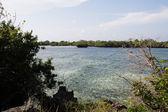 Chale island — Stock Photo