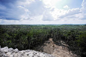 Mayan site of Coba — Stock fotografie