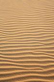 Dune de sable de cumbuco — Photo