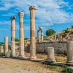 Ephesus ruins Turkey — Stock Photo #19119181