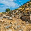Ephesus ruins Turkey — Stock Photo #19119187