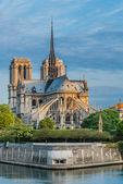 Notre dame de paris and the seine river France — Stock Photo