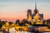 Notre-dame de paris e o sena pelo rio à noite frança — Foto Stock