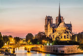 Notre dame de paris en de seine door nacht rivier frankrijk — Stockfoto