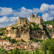 Chateau de beynac france — Stock Photo #26707789