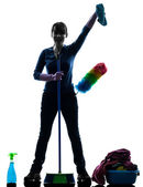 Woman maid housework cleaning products silhouette — Stock Photo