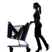 Woman with full shopping cart silhouette — Stock Photo