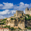 Stock Photo: Chateau de beynac france