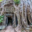 Tprohm angkor wat cambodia — Stock Photo #41050487