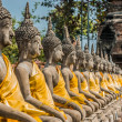 Stock Photo: Aligned buddhstatues