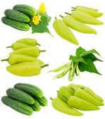 Collection de légumes frais — Photo