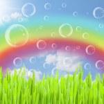 Rainbow background — Stock Photo #24903189