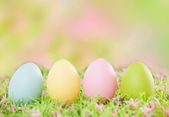 Egg color — Stock Photo