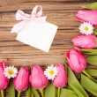 Spring voucher greeting card — Stock Photo