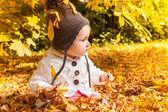 Autumn fall — Stock Photo