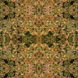 Seamless leaves pattern. - Stock Photo