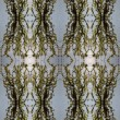 Seamless spring pattern. - Stock Photo