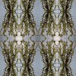Royalty-Free Stock Photo: Seamless spring pattern.